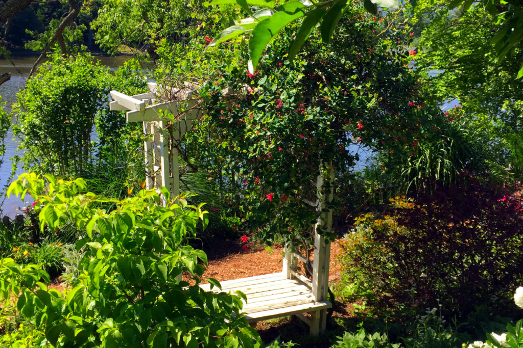 Arbor House B&B of Black Mountain Garden Tour